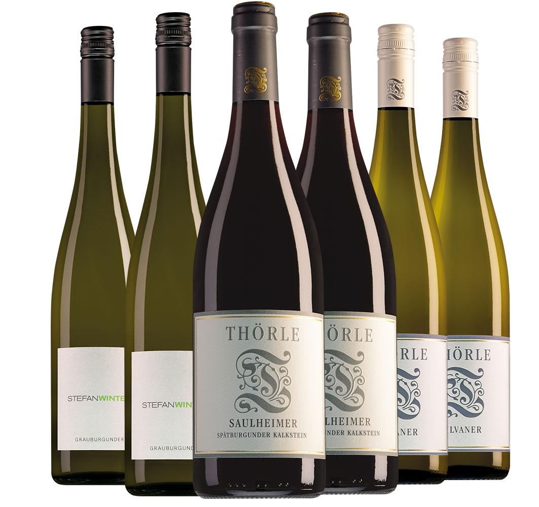Weingut Thörle Rheinhessen Saulheimer Spätburgunder Kalkstein