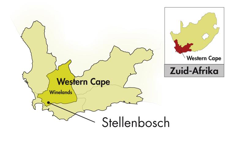 DeMorgenzon Stellenbosch Chenin Blanc Reserve